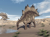 <p>Stegosaurus had a brain the size of a walnut - only 3 centimetres long and weighing 75 grams. However, comparing brain size to body size sauropodomorphs, like Plateosaurus, were probably one of the dumbest dinosaurs.</p>