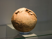<p>Dinosaur eggs come in all shapes and sizes. They tend to be ovoid or spherical in shape and up to 30cm in length - about the size of a rugby ball. The smallest dinosaur egg so far found is only 3cm long. Once the egg has been fossilised it will become hard like rock, but it will retain a structure of its own.</p>
