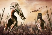 Giant Winged Predators could of Eaten Dinosaurs