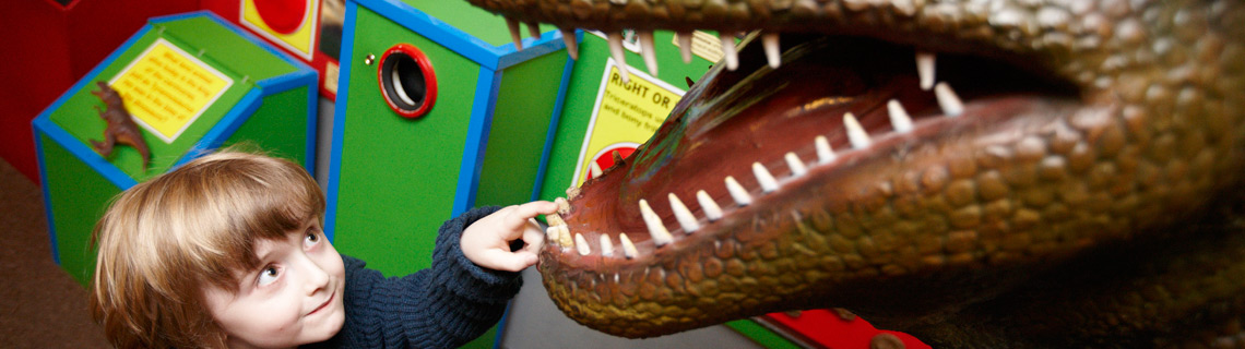 Dino Fun Facts | The Dinosaur Museum
